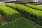 Green Fields Commercial landscaping 1