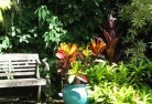 Green Fields Tropical landscaping 11