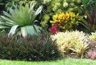 Green Fields Tropical landscaping 9